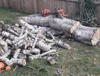 house & garden waste removels