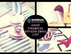 Chief Financial Officer Email List (Updated On JUN)
