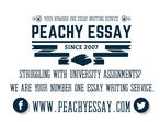 Essay Help / Dissertation / Assignment / PhD / Thesis / Research by Our Professional Team