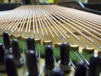 Piano Tuning, Repair, Restoration, - Highly Qualified Piano Tuner Technician. Piano Tuning £55.