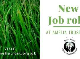 EDUCATION TUTOR & ANIMAL CARE LEAD