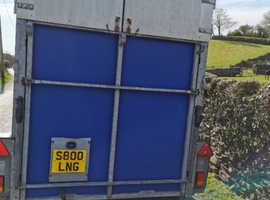 505 Ifor Williams horse box