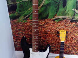 ELECTRIC GUITAR AND UKULELE BOTH COME WITH CASES £60FOR QUICK SALE AS MOVING HOUSE SOON