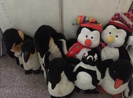Penguin teddies