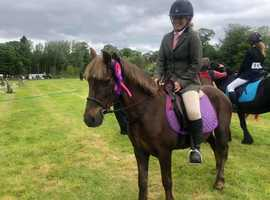 13hh approx mare