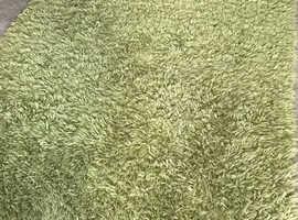 Lovely large lime green rug