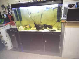 300ltr tank and cabinet