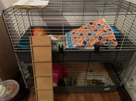 Double guinea pig cage