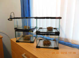KOMODO NANO HABITATS FOR SALE
