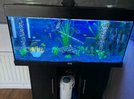 180l fish tank everything included