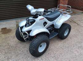 Nemesis  100cc  Quad