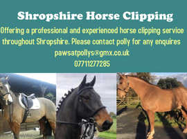 Shropshire horse clipping