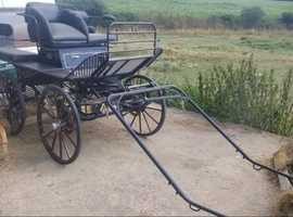 Hartland large versatile carriage