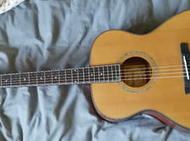 Brand new Ashbury acoustic guitar