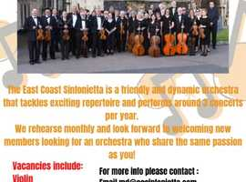 We are now recruiting violinists, Violas, Celists and Double Bassists for our friendly orchestra