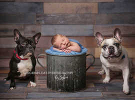Newborn , Maternity and Family photographer