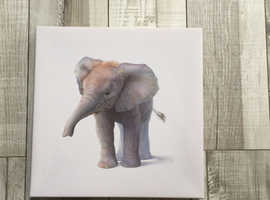 Canvas baby elephant picture