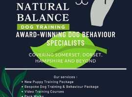 Award-winning dog training and behaviour