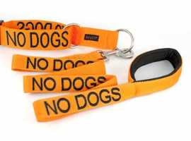 No dogs lead and collar