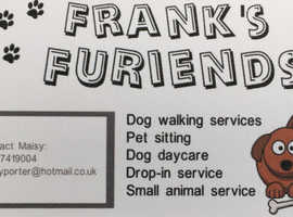 Frank's Furiends Dog Services