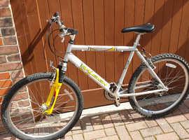 Raleigh Aero Max - Mens Bike
