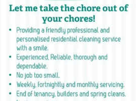 Friendly experienced domestic cleaner
