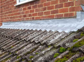 Gutters roofs etc painting services