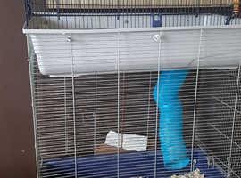 Xl rat/ferret cage