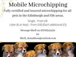 Mobile Microchipping in Edinburgh, Fife and Surrounds