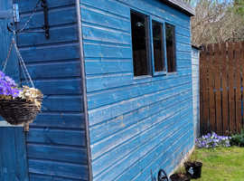 Shed 5ftx8ft for Sale - Glasgow