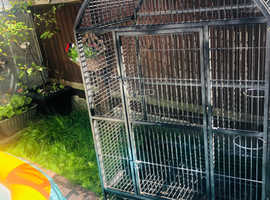 Paroots / birds cage