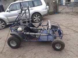 Wasp petrol buggy