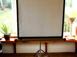 Two Hunter Traveller Projection Screens