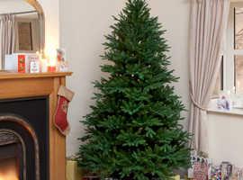 "7' 5"" Flat Rock Frasier Fir Green Luxury Premium Christmas Tree BIN"
