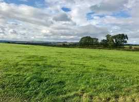 GRAZING AVAILABLE - 7 ACRES - BROOMLEY NE43