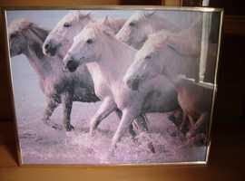Framed pitcher of running Horses