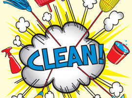 Are you looking for a fast, reliable cleaner?