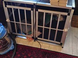 Vehicle dog crate