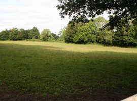 Farmland wanted for hardwood tree planting and keeping sheep