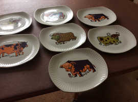 7 used Beefeater steak plates, English Ironstone Pottery .