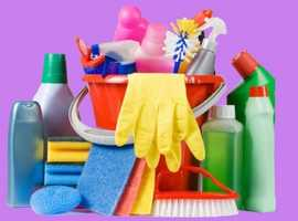 Professional cleaning services from £11.80