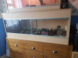Complete viv set up