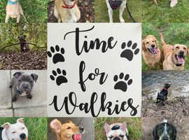 Dog walker -Kiki's K9's dog walking services