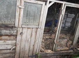 Large animal house
