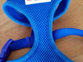 Arcol soft mesh dog harness