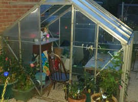 Green House free to dismantle and take it away just want it gone