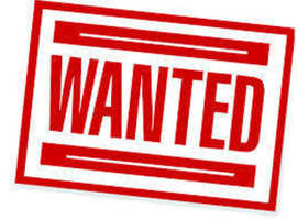 WANTED YEELLOW AND WHITE BUDGIES ALSO OTHER BIRDS ECT AND BREEDING CAGES
