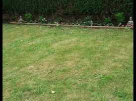 Greener's gardening