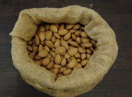 Last year's crop of Almonds.