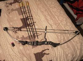 ASD 60lbs Compound bow and arrows archery set.